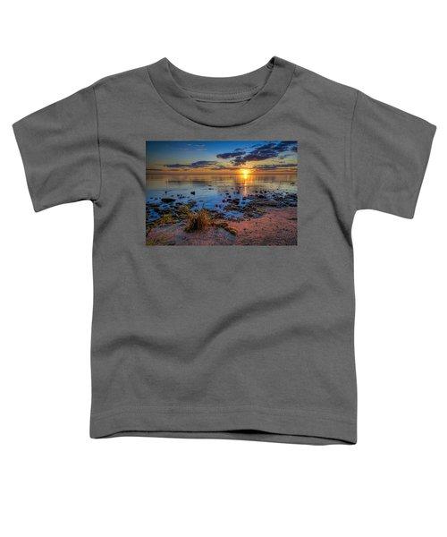 Sunrise Over Lake Michigan Toddler T-Shirt by Scott Norris