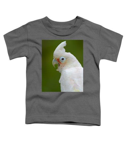 Tanimbar Correla Toddler T-Shirt by Tony Beck