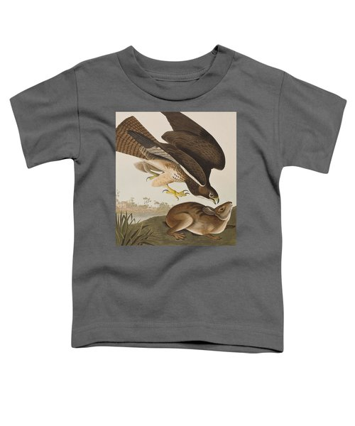 The Common Buzzard Toddler T-Shirt by John James Audubon