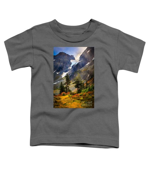 Top Of Cascade Pass Toddler T-Shirt by Inge Johnsson