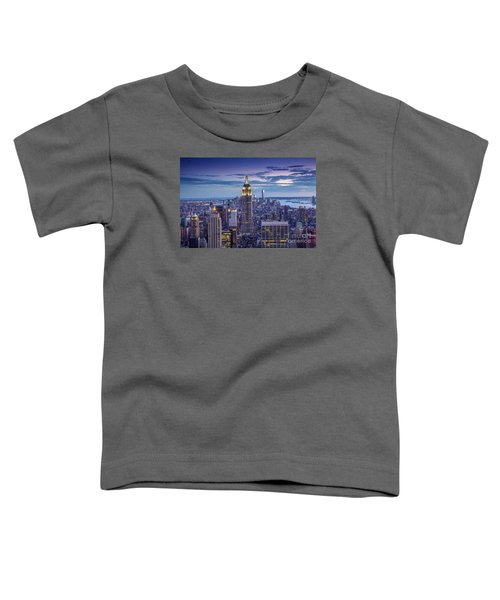 Top Of The World Toddler T-Shirt by Marco Crupi