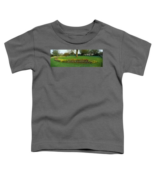 Tulips In Hyde Park, City Toddler T-Shirt by Panoramic Images