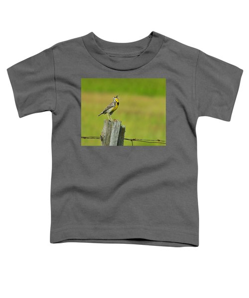 Western Meadowlark Toddler T-Shirt by Tony Beck