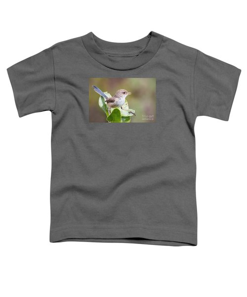 White Winged Fairy Wren Toddler T-Shirt by Kym Clarke