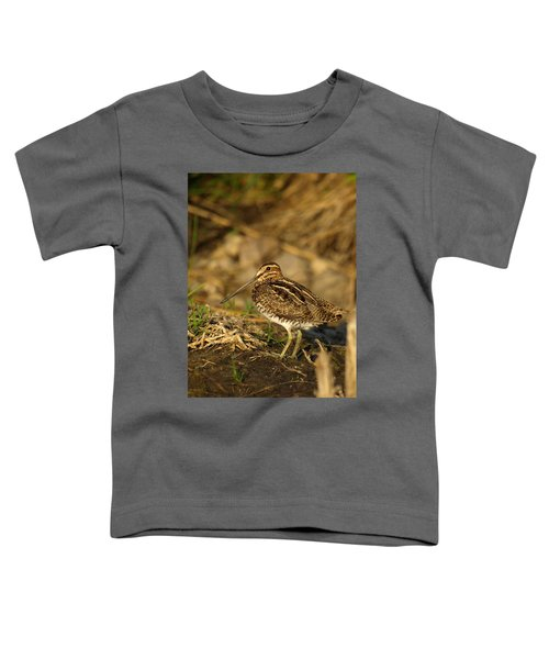 Wilson's Snipe Toddler T-Shirt by James Peterson