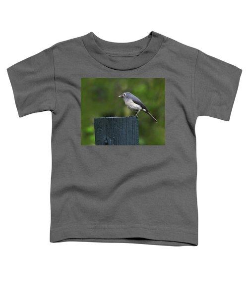 White-eyed Slaty Flycatcher Toddler T-Shirt by Tony Beck