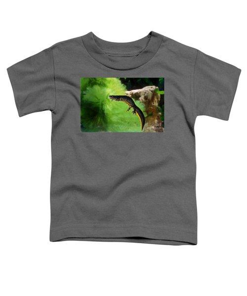 Alpine Newt Triturus Alpestris Toddler T-Shirt by Gerard Lacz