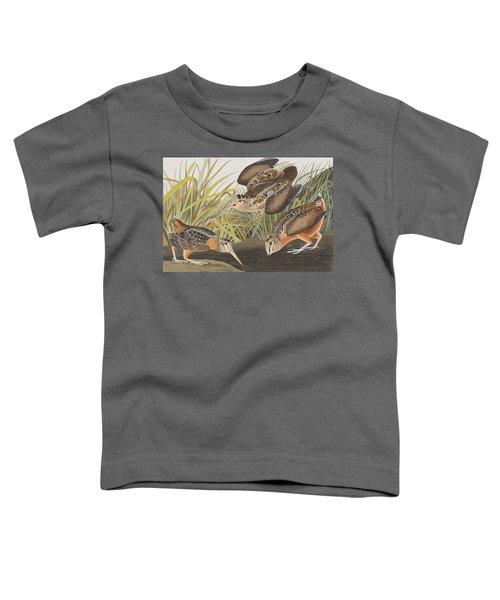 American Woodcock Toddler T-Shirt by John James Audubon