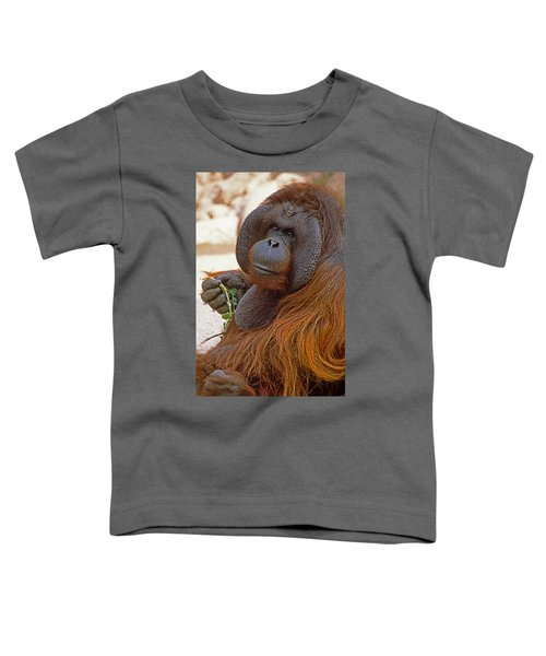 Big Daddy Toddler T-Shirt by Michele Burgess