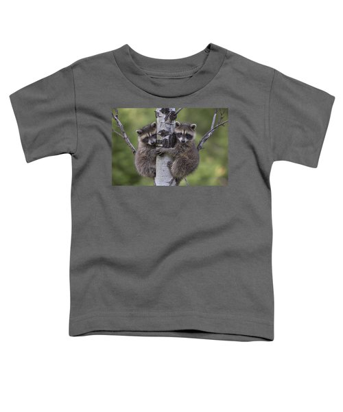 Raccoon Two Babies Climbing Tree North Toddler T-Shirt by Tim Fitzharris