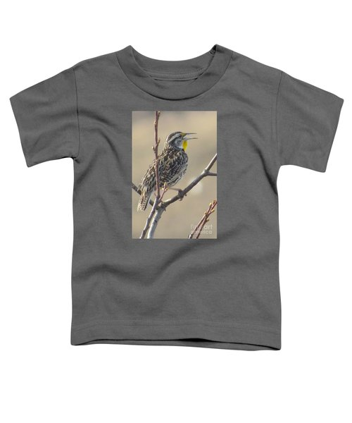 Western Meadowlark Toddler T-Shirt by Frank Townsley