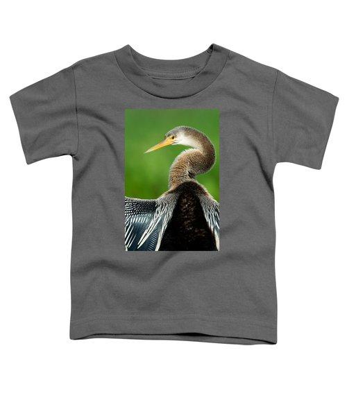 Anhinga Anhinga Anhinga, Pantanal Toddler T-Shirt by Panoramic Images