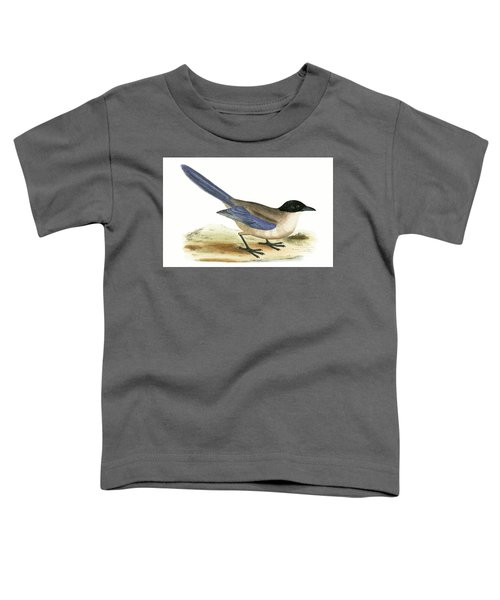 Azure Winged Magpie Toddler T-Shirt by English School