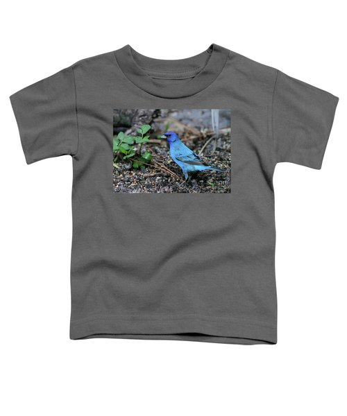 Beautiful Indigo Bunting Toddler T-Shirt by Sabrina L Ryan