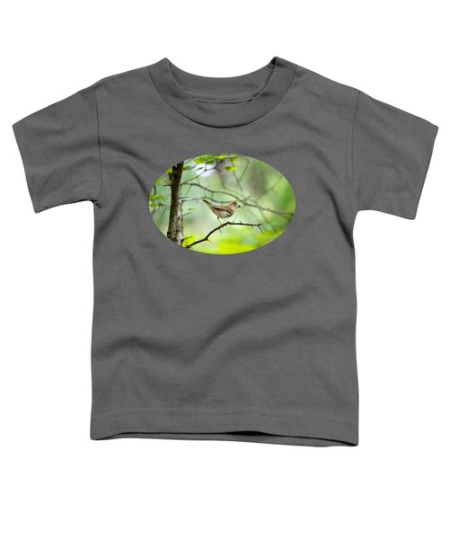 Beauty Of The Spring Forest Toddler T-Shirt by Christina Rollo