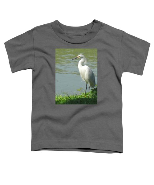 Bird Toddler T-Shirt by Sandy Taylor