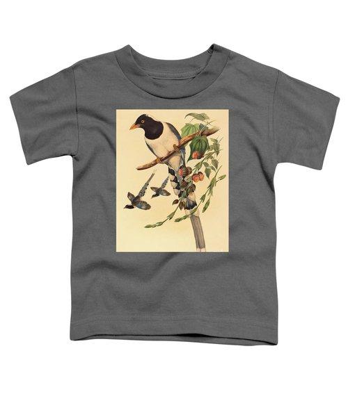Blue Magpie, Urocissa Magnirostris Toddler T-Shirt by John Gould