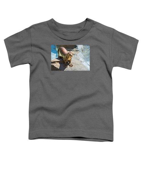Catching Some Sun Toddler T-Shirt by Jamie Pham