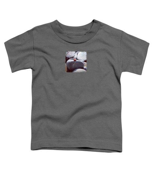 Sunbathing Ladybug Toddler T-Shirt by Deschips
