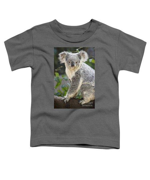 Female Koala Toddler T-Shirt by Jamie Pham