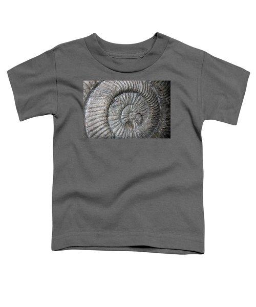 Fossil Spiral  Toddler T-Shirt by LeeAnn McLaneGoetz McLaneGoetzStudioLLCcom