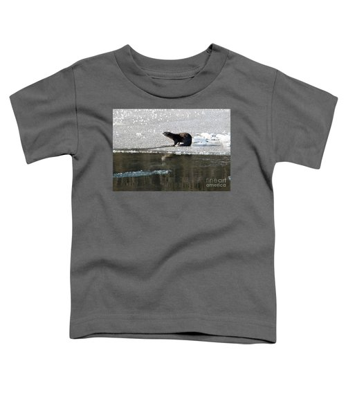 Frosty River Otter  Toddler T-Shirt by Mike Dawson