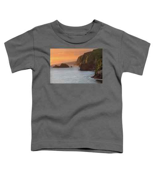 Hawaii Sunrise At The Pololu Valley Lookout 2 Toddler T-Shirt by Larry Marshall