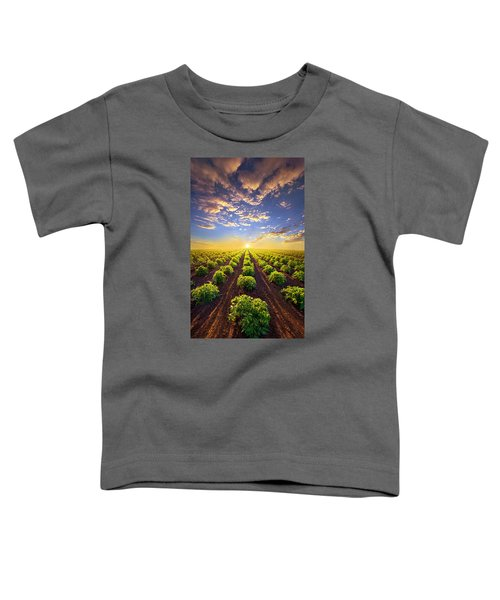 Into The Future Toddler T-Shirt by Phil Koch