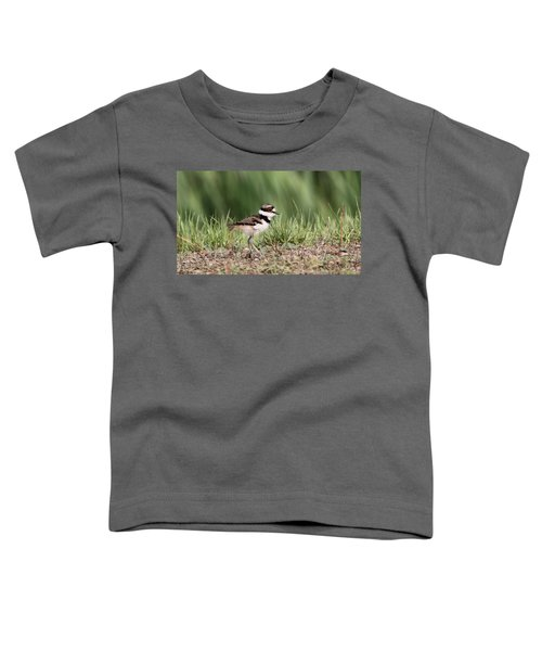 Killdeer - 24 Hours Old Toddler T-Shirt by Travis Truelove