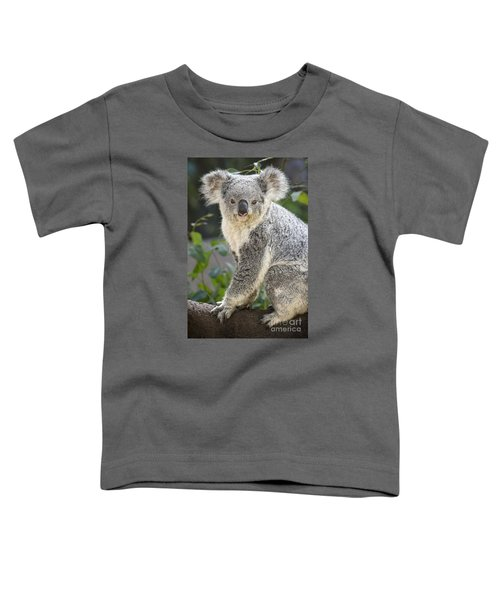 Koala Female Portrait Toddler T-Shirt by Jamie Pham
