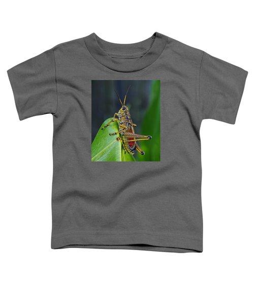 Lubber Grasshopper Toddler T-Shirt by Richard Rizzo