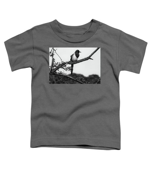 Magpie  Toddler T-Shirt by Philip Openshaw