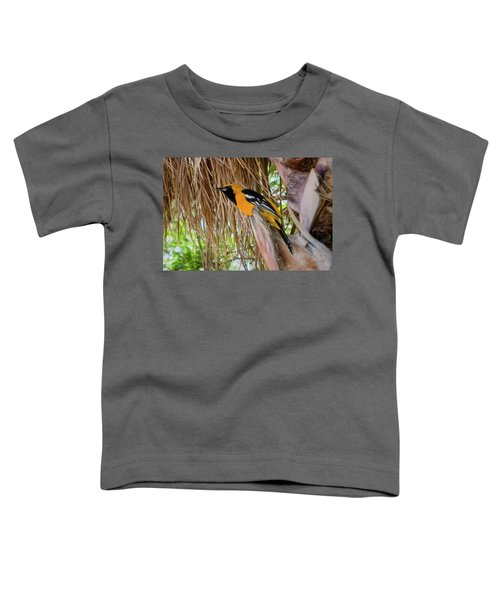 Male Hooded Oriole H17 Toddler T-Shirt by Mark Myhaver