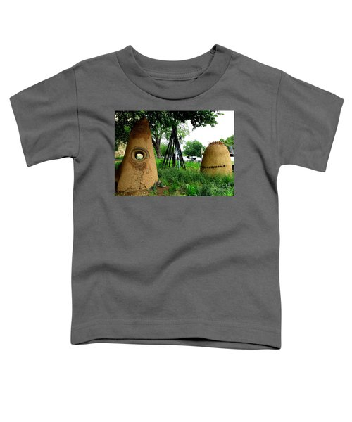 National Museum Of The American Indian 5 Toddler T-Shirt by Randall Weidner