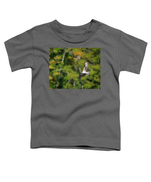 Osprey Toddler T-Shirt by Bill Wakeley