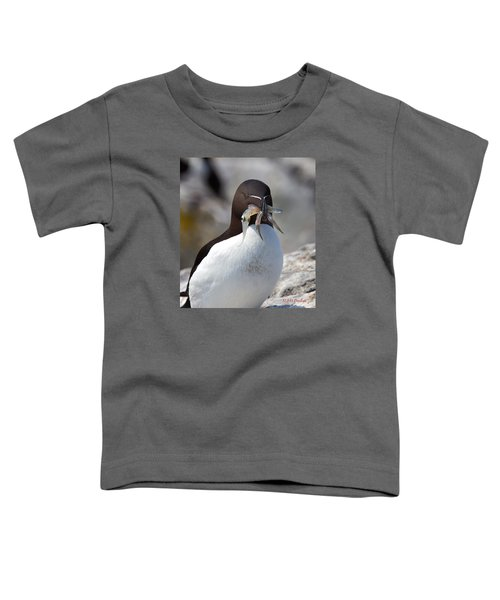 Razorbill With Catch Toddler T-Shirt by Mike Dodak
