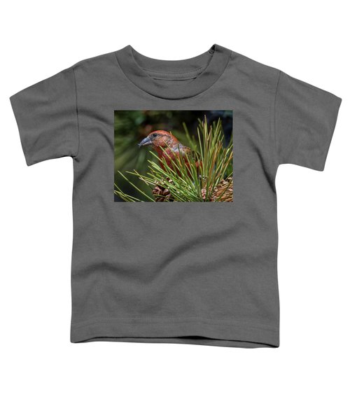 Red Crossbill Toddler T-Shirt by Michael Cunningham