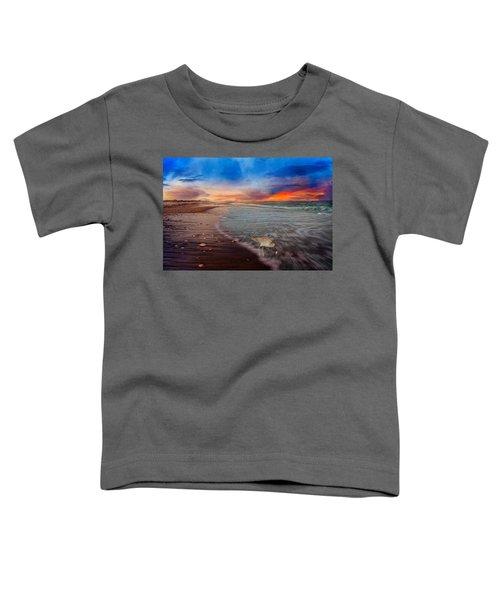 Sandpiper Sunrise Toddler T-Shirt by Betsy Knapp