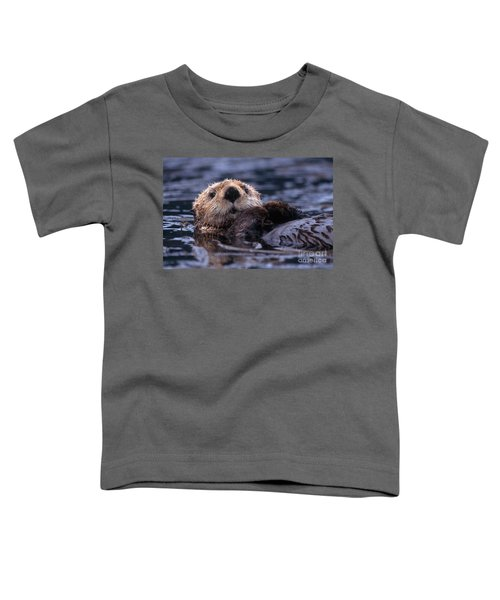 Sea Otter Toddler T-Shirt by Yva Momatiuk and John Eastcott and Photo Researchers