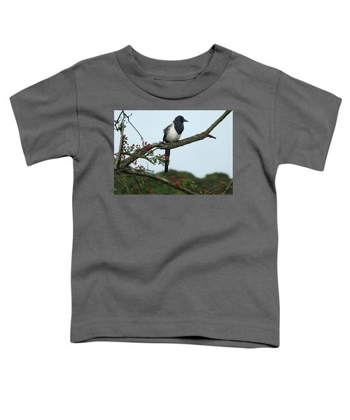 September Magpie Toddler T-Shirt by Philip Openshaw
