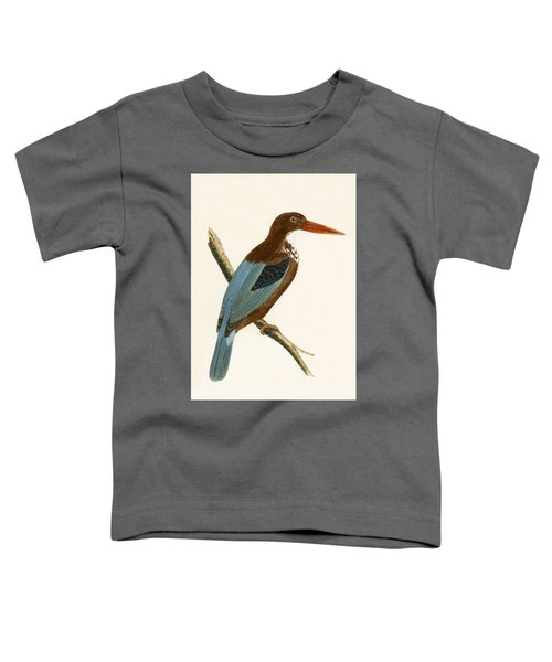 Smyrna Kingfisher Toddler T-Shirt by English School