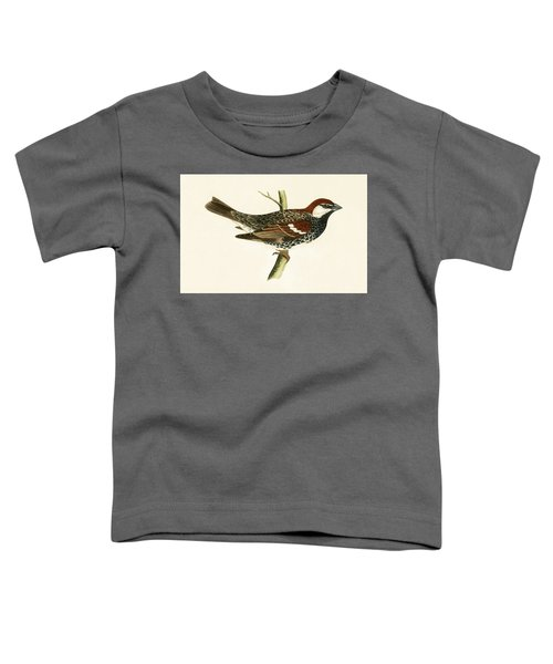 Spanish Sparrow Toddler T-Shirt by English School