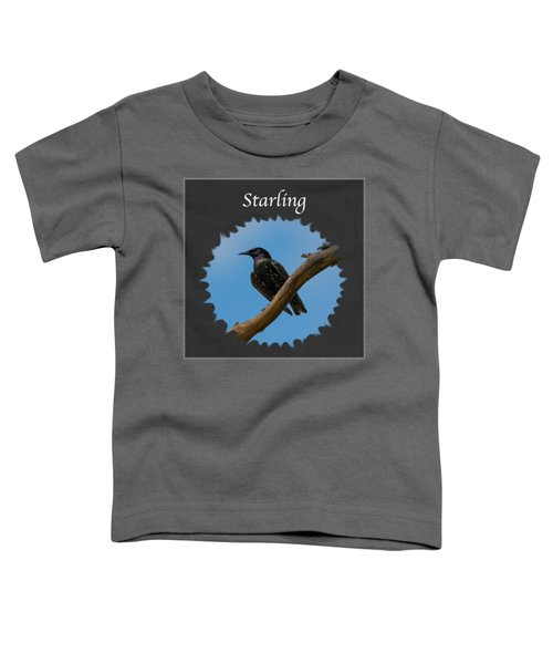 Starling   Toddler T-Shirt by Jan M Holden