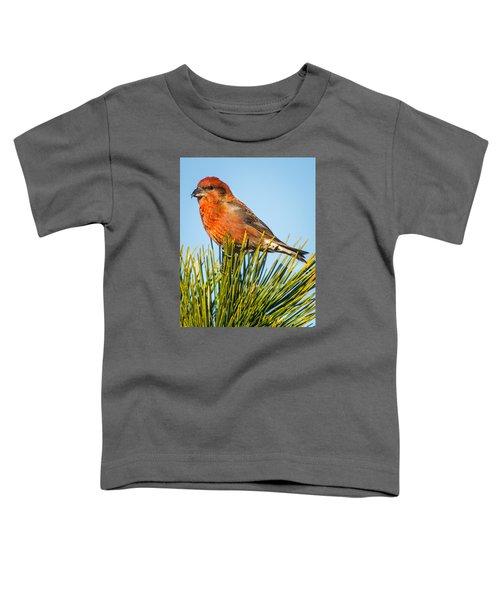 Tree Top Toddler T-Shirt by John Crookes