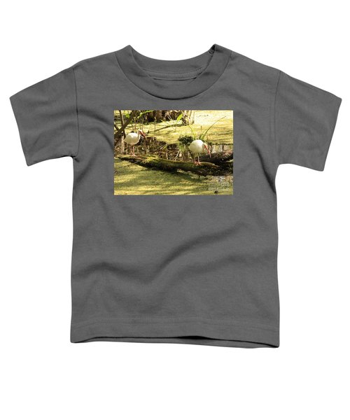 Two Ibises On A Log Toddler T-Shirt by Carol Groenen