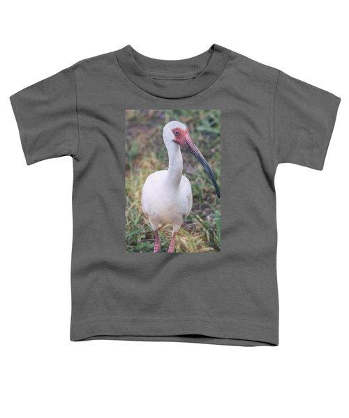 White Ibis In The Morning Light  Toddler T-Shirt by Saija  Lehtonen