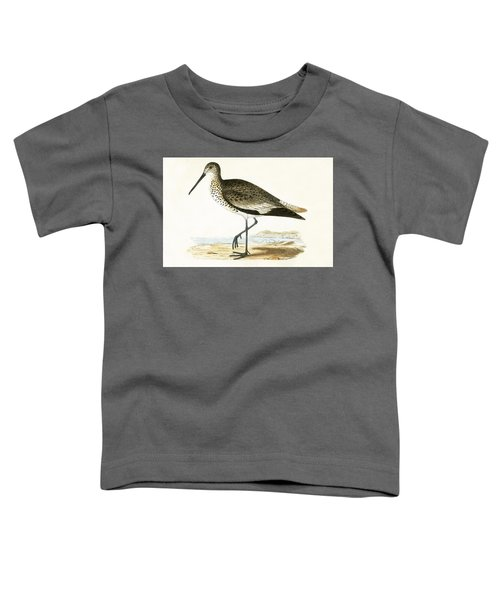 Willet Toddler T-Shirt by English School