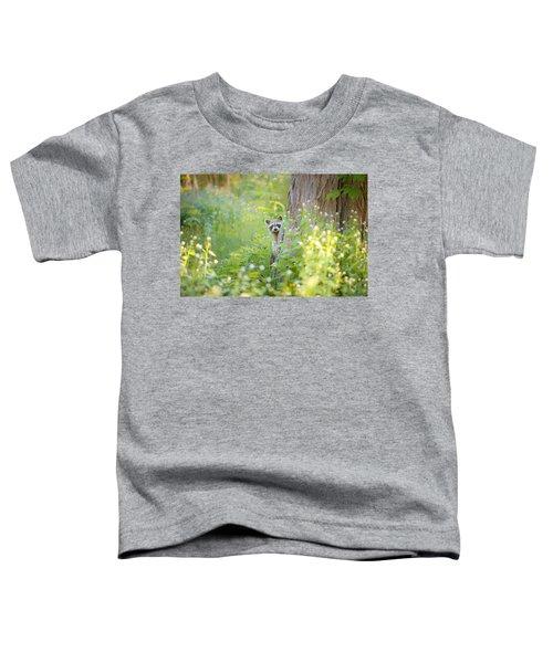 Peek A Boo Toddler T-Shirt by Carrie Ann Grippo-Pike
