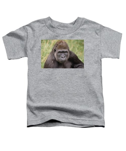 Western Lowland Gorilla Young Male Toddler T-Shirt by Gerry Ellis