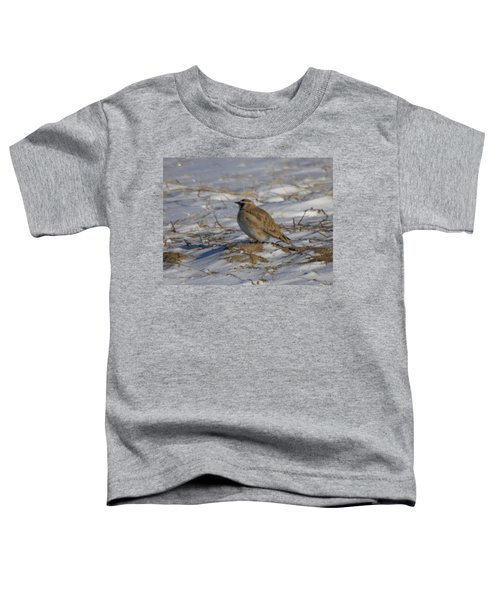 Winter Bird Toddler T-Shirt by Jeff Swan